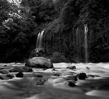 The River b&w by RobSimpson