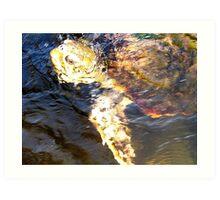 """Endangered"" Art Print"