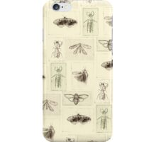 Insect prints pattern iPhone Case/Skin