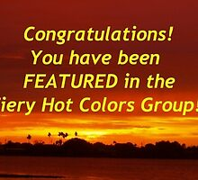 Group feature banner by ♥⊱ B. Randi Bailey