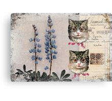Kitty Kitty Hard Journal Cover Canvas Print