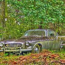 Dying Volvo HDR by WTBird