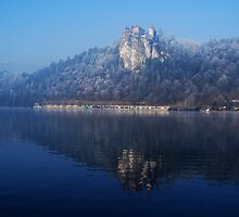 Castle Bled in the mist by DeePhoto