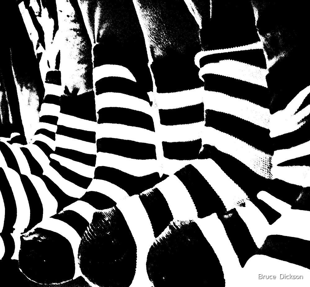 zebra crossing by Bruce  Dickson