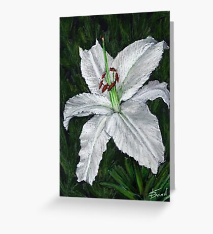 Lilium Casa Blanca Greeting Card
