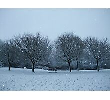 Snowy Scene, Honiton, January 2010 Photographic Print