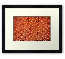Metallic Vintage Net Framed Print
