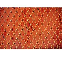 Metallic Vintage Net Photographic Print