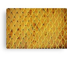 Background of vintage iron net Canvas Print
