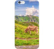 Walking Trail iPhone Case/Skin