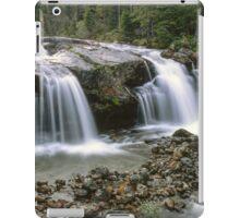 Beautiful waterfall iPad Case/Skin