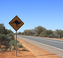Kangaroos Crossing by Tam  Locke