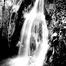 Waitui Falls by Jodie Bennett