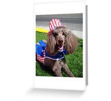 Yankee Doodle Poodle Greeting Card