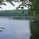 Wonder Lake by CMCetra