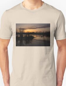 Sundown with Bare Branches T-Shirt