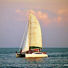 Sunset Cruise by Colleen Rohrbaugh