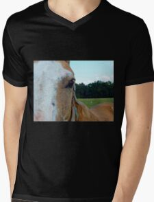 The Soul Of The Horse Mens V-Neck T-Shirt