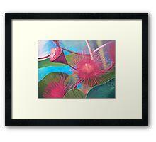 Gum Blossom - Macro view Framed Print