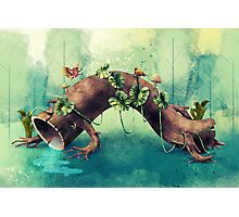 Forest Creature Photographic Print