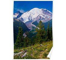 Rainier from Silver Forest Poster