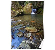"""Mini falls & rock Pool"" Poster"