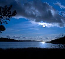 Full moon time… by Veikko  Suikkanen