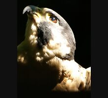 """Peregrine Falcon I"" Unisex T-Shirt"