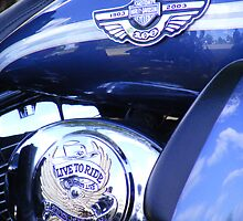 1903-2003 Centenary Harley Davidson by UrSpecialAngel