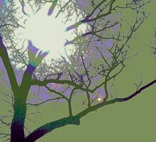 Sun Behind the Trees Sticker