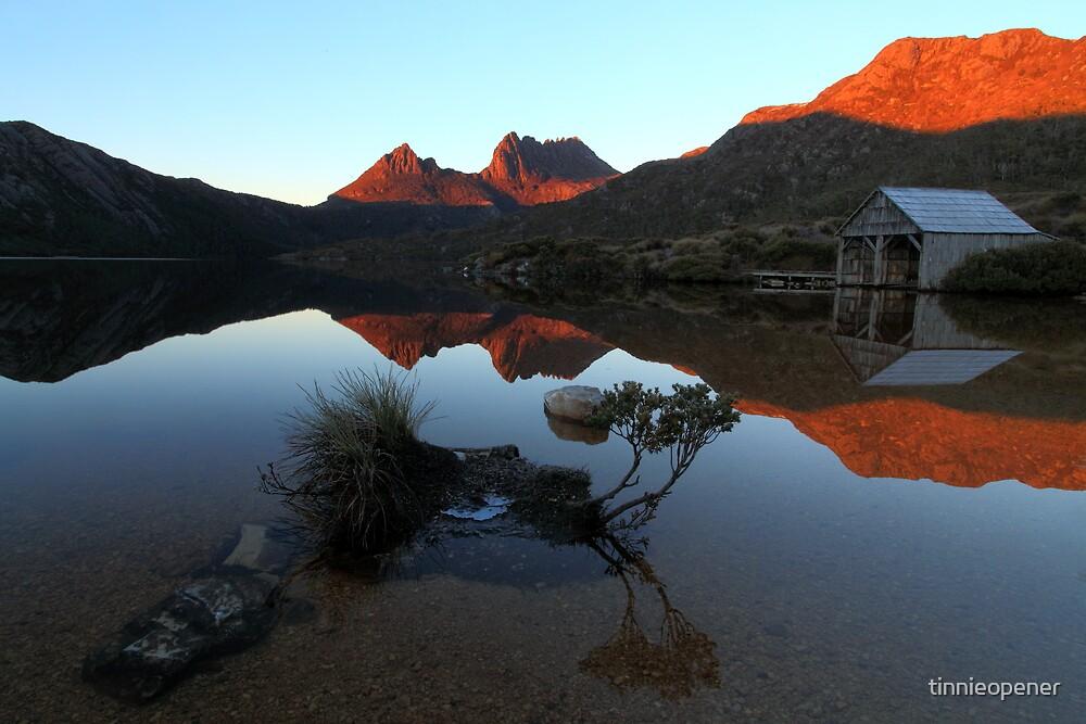 Dove Lake Bonsai by tinnieopener