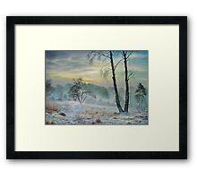 Winter Storm SPECIAL OFFER 275 $ !!! Framed Print