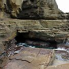 The Blow Hole at Warriewood by Doug Cliff