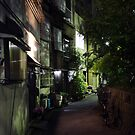 Green street, Japan by Alan Black