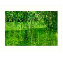 Under the willow tree Art Print