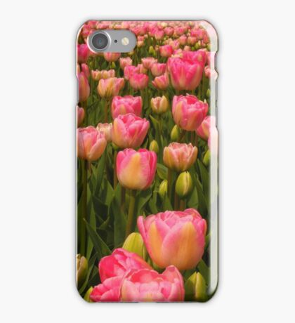 Candy Tulips iPhone Case/Skin