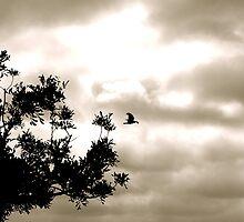 Tree CDXI by ChikoFueji