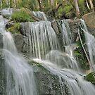 Nojee waterfall by Judi Corrigan