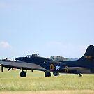 B-17 Memphis Belle by Steven Squizzero