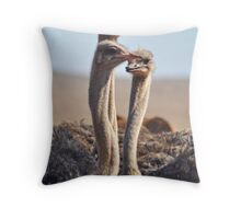 Ostrich trio Throw Pillow