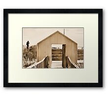 Another Photographer Framed Print