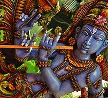Krishna by Jagadeesh Sampath