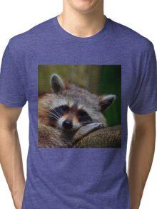 Raccoon Face Tri-blend T-Shirt