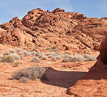 Small rock outcrop by Henry Plumley