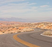 Desert curvy road by Henry Plumley