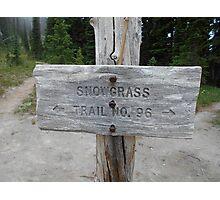 Snow grass flats trail post Photographic Print