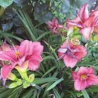 FLOWER GARDEN by paintnpot