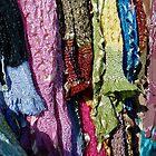Whose Sari? by DarylE