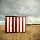 Beach Hut, Great Yarmouth, Norfolk by DaveTurner