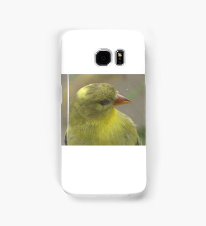 Bird that wanted in my house Samsung Galaxy Case/Skin